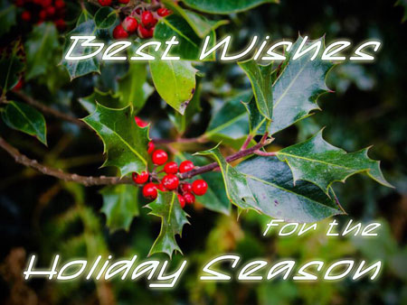 Seasons greetings photo